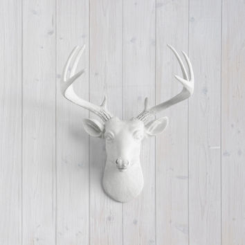 The Virginia White Faux Mini Deer Head