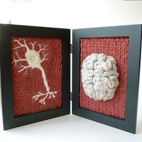 Knitted Neuroscience