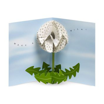 Dandelion Wishes Pop-Up Note Cards Set of 6