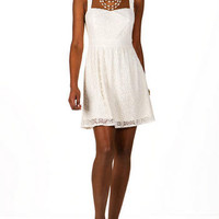 Cannes Lace Dress                       - Francescas