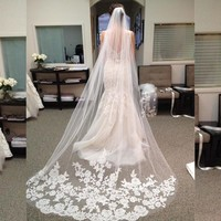 Cathedral Train Lace Bridal Veil