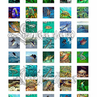 Variety of Fish on the Planet Art - - Digital Collage Sheets - 1.0 inch Squares for Jewelry Makers, Party Favors, Wedding Projects, Crafts