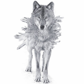 Quartz Crystal Wolf Signed Print | Art | Photograph | Double Exposure