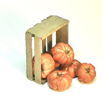 Miniature Pumpkins Primitive Wood Crate Fairy Garden Dollhouse Rustic Farm Decor