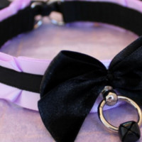 Lavender and Black Collar - Kitten's Playpen