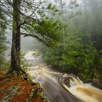 Nature Photography, Waterfall in Forest, Nature Spirits, Fairy Land, Copper Falls State Park, Wisconsin, Spring, Fog, Green Brown White