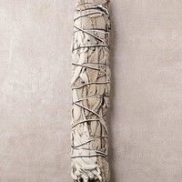 White Sage And Feather Sage Smudge - Large