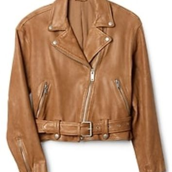 Belted Moto Jacket in Leather | Gap