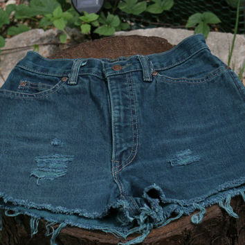 Vintage Calvin Klein Distressed High Wast Cut Off Shorts Size 6