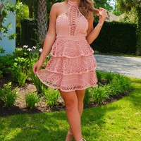 All The Compliments Dress: Blush