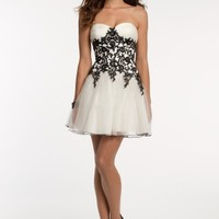 Lace Piped Edge Dress