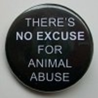 Action for Animals :: Buttons :: There's No Excuse for Animal Abuse (1 1/4 inch) - Button