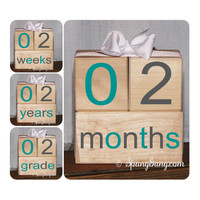 Photography Prop.  Pregnancy announcement. Baby shower gift. Monthly milestones. Baby Shower Nursery Decor. Milestone Blocks. Grey Teal