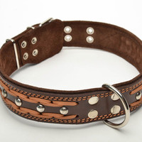 Brown handmade marvelous creative unusual perfect leather collar for big dog