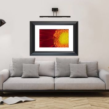 Nature Photography - Nature's Beauty Red and Yellow  Gerbera Daisy Flower - Fine Art Canvas - Home Decor Unframed Wall Art Prints