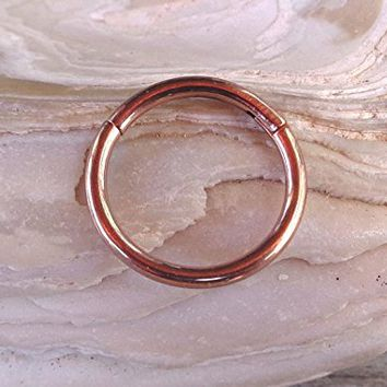 Hinged Segment Ring,Seamless,Endless Septum Ring,Tragus Piercing Jewelry,Helix,Cartilage,Scaffold,Upper Ear,Segment Ring,Lip Ring,Nipple Ring,Endless Hoop Earring Color Rose Gold.16 Gauge(1.2mm).Diameter:10mm