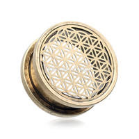 A Pair of Antique Brass Flower of Life Screw-Fit Tunnel Plug