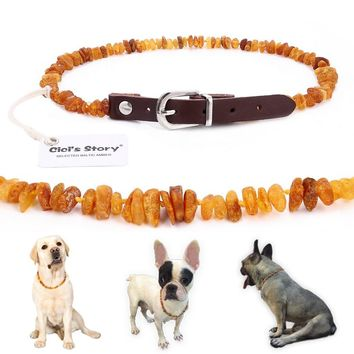 Baltic Amber Flea and Tick Collar with Adjustable Leather Strap for Dogs and Cats