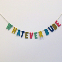 Hot pink, teal, blue, green, and yellow Whatever Dude felt party banner wall hanging, wall decor