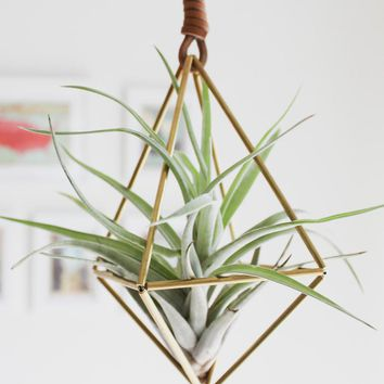 Himmeli Diamond Air Plant Ornament