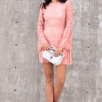 Sofia Blush Lace Dress