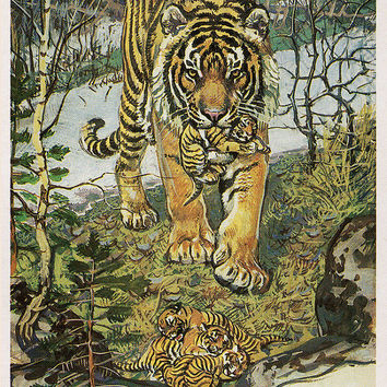 The Amur Tiger (Artist V. Gorbatov) Vintage Postcard - Printed in the USSR, «Fine Art», Moscow, 1984
