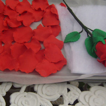 Rose Petals And One Long Red Stem Rose