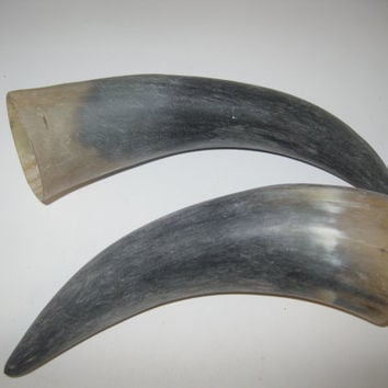 2 Cow horns...E2A69....Natural colored raw  cow horns...........ox horns
