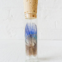 Real Peacock Feather Specimen In Glass Vial Cork Top