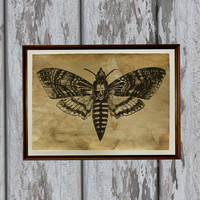 Moth Vintage art print Antique paper Antiqued decoration Old looking