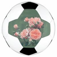 Beautiful pink roses on a natural green background soccer ball
