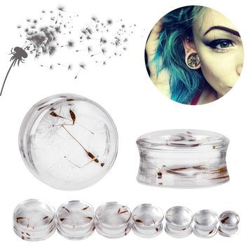 1 Pair 10mm-22mm Ear Expander Body Piercing Tunnels Jewelry Natural Dandelion Resin Flesh Tunnels Stone Ear Plugs Ear Gauges