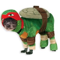 Teenage Mutant Ninja Turtles Raphael Pet Costume – Spirit Halloween
