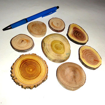 Tree Branch Slices, Assorted Blank Tree Branch Slices, DIY Ornament Tag Wood Round, Different Wood Slices, DIY Project, Rustic Wood Slices