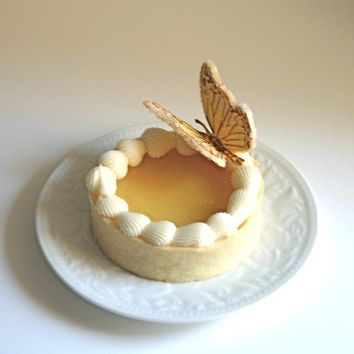 Edible Sugar Butterflies Pale Yellow and Turquoise 10