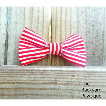 Red and White Stripe Bowtie Collar Slider, Red and white bowtie, red bowtie collar slider,dapper bowties for pets, pets neckwear, bowties