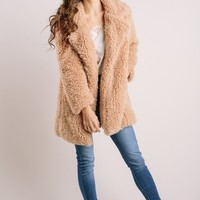 Brenna Taupe Faux Fur Teddy Coat