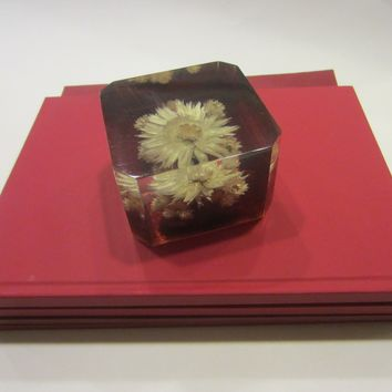 Republic South Africa Lucite Paperweight Dried Flower Encased Label Marked