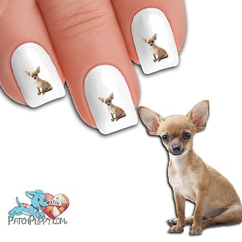 Chihuahua Sitting Nail Art Decals (NOW 50% MORE FREE)