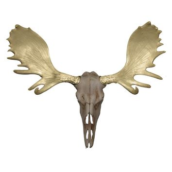 The Alberta Skull | Moose Skull | Faux Taxidermy | Natural Rustic + Gold Antlers Resin