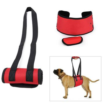 Nylon Dog Lift Support Harness. For Aid Lifting Older Canines With Arthritis Or Weak Hind Legs Joints