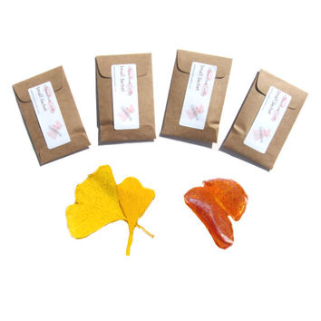 Amber Glow Scented Drawer Sachets, Autumn Candle Party Favors, Modern Home Fragrance, Yellow Mustard Brown Rustic Minimal