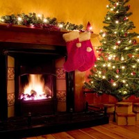 Christmas Tree Fire place Wood Backdrop - x067