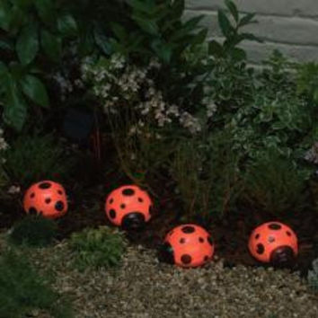 Ladybug Solar Light Set