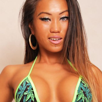 Marijuana Print Basic Triangle Bikini Top Marijuana Clothing
