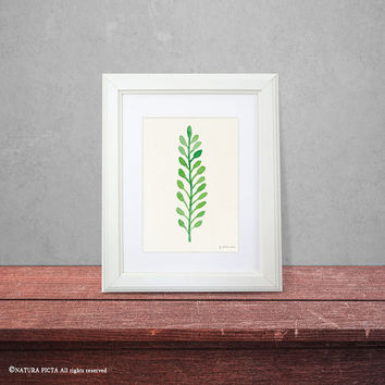 Leaf print-watercolor leaf print-fall print-harvest print-leaf wall art-home decor-botanical print-nature print-garden-NATURA PICTA-NPWP04