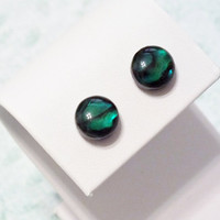 Surgical Steel Green Paua Cabochon Earrings