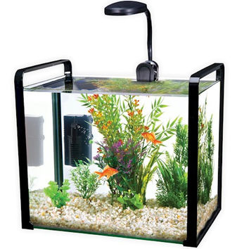 Parallel 8 Gallon Designer Glass Aquarium