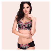 Women's Bra Set Underwear Women 32-38 A-D Lace Push Up Bra Set