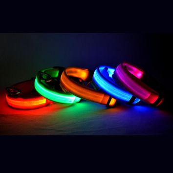 Glow in the Dark LED Dog Cat Pet Collar Flashing Light Up Nylon Leash Night Safety Collars 8 Colors S M L Size Pet Supplies